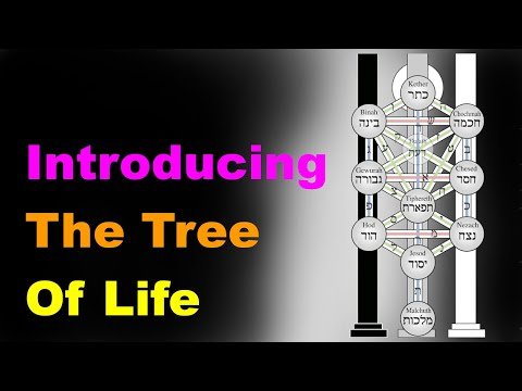 The tree of life: a beginner's guide [esoteric saturdays]
