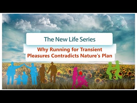 Why running for transient pleasures contradicts nature's plan   new life with dr. laitman   1219